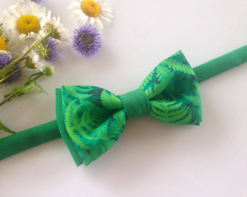 Papardes zieds (sieviešu tauriņš)